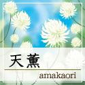chaicon_shouji_amakaori